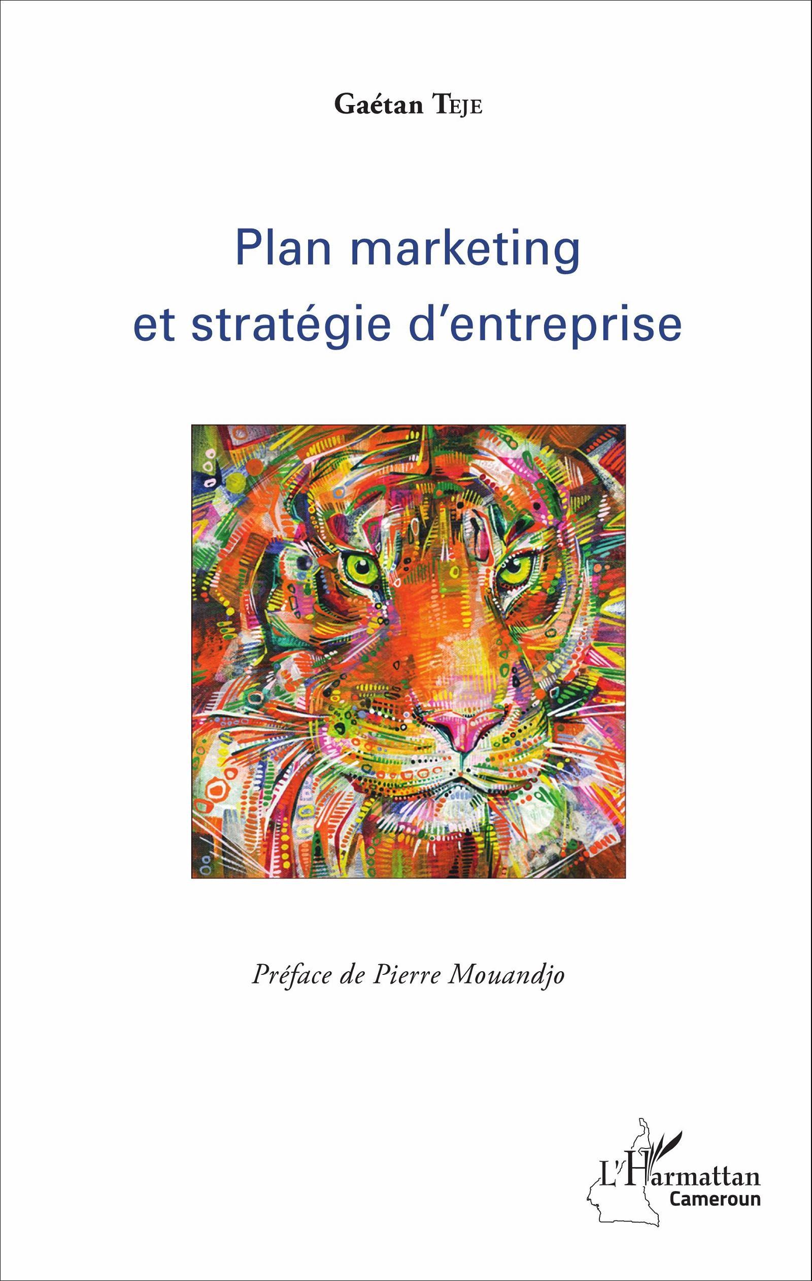 livres  plan marketing et strategie d entreprise de gaetan teje